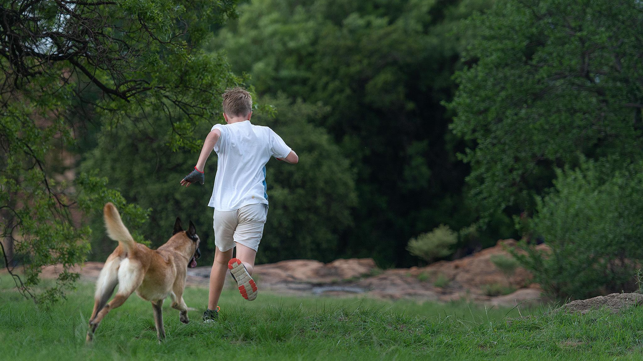 Pet Photographer, Johannesburg, Gauteng, South Africa