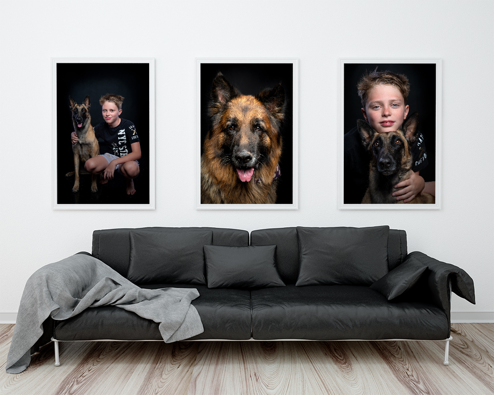 Pet Wall Art Photographer