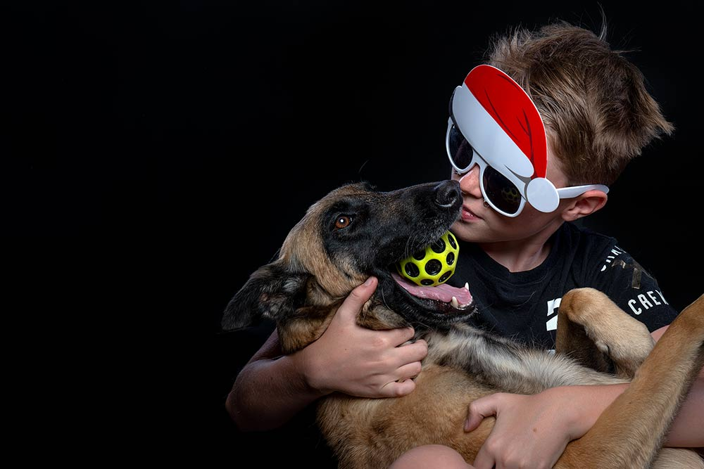 the day my son had a dog shaped hole - the joy of owning a pet